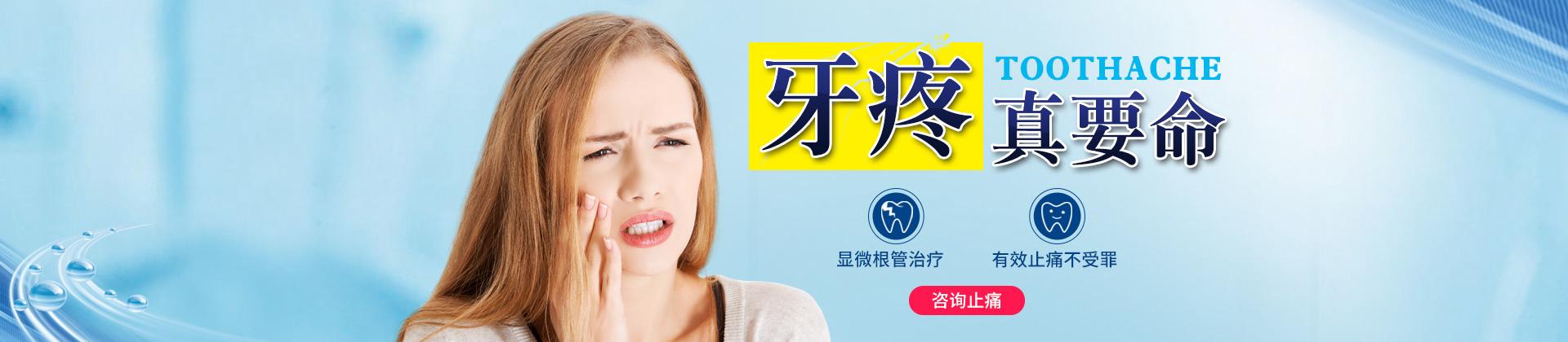 牙疼真要命 显微根管治疗不受罪